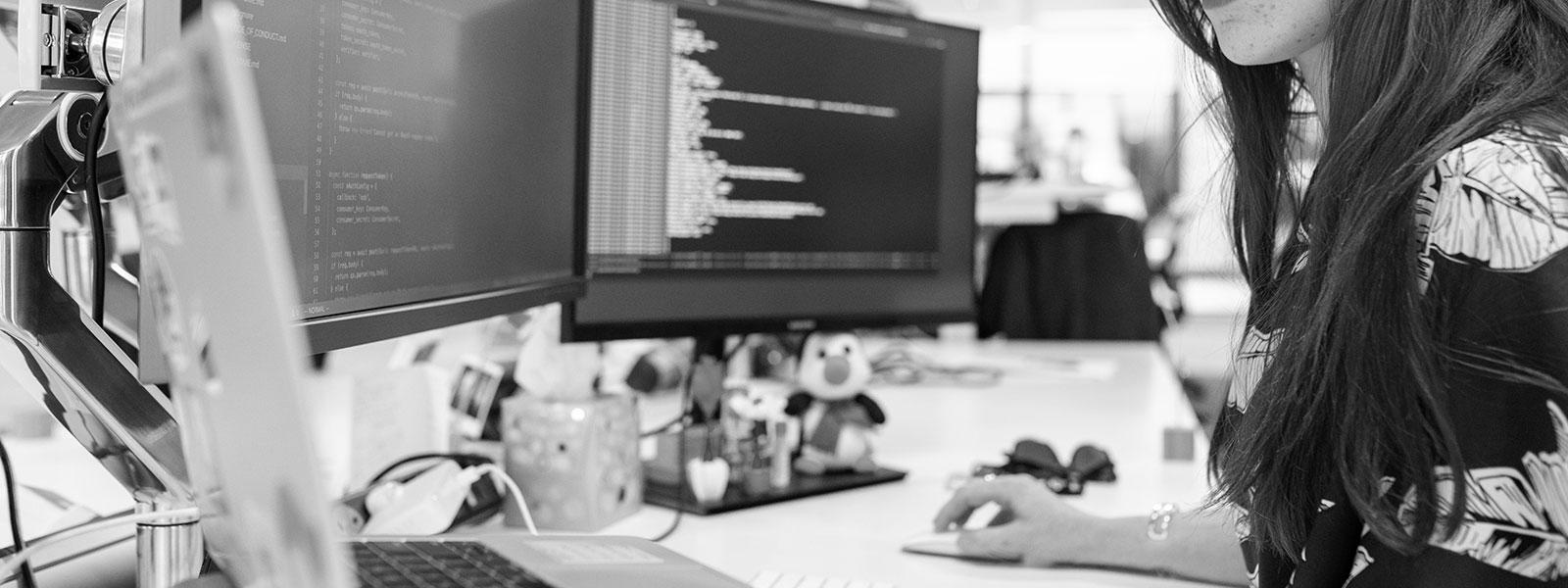 Developer programming